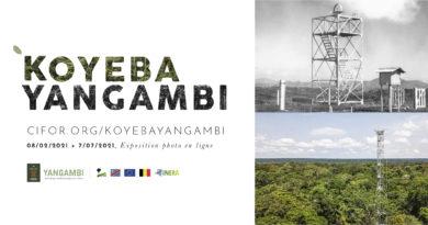 Lancement d'une exposition photographique avec du matériel inédit sur le centre de recherche de Yangambi